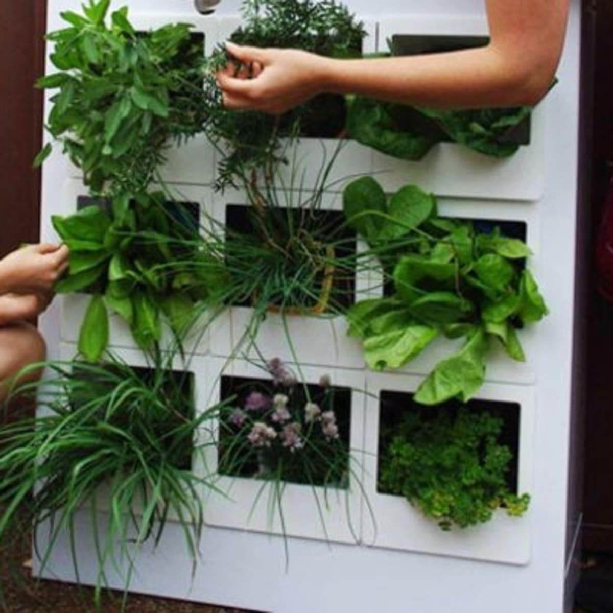 9 Innovative Indoor Garden Designs - Organic Authority