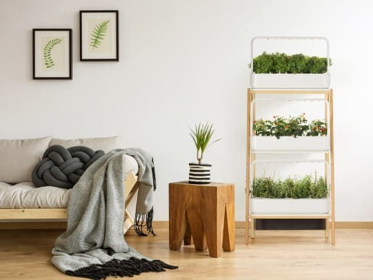 Smart Garden by Click and Grow