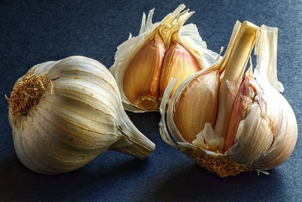 garlic is a natural aphrodisiac food