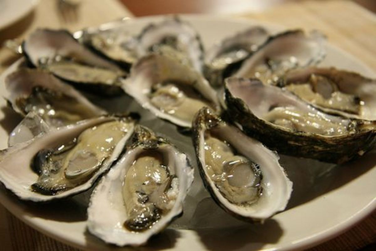 oysters are a natural aphrodisiac