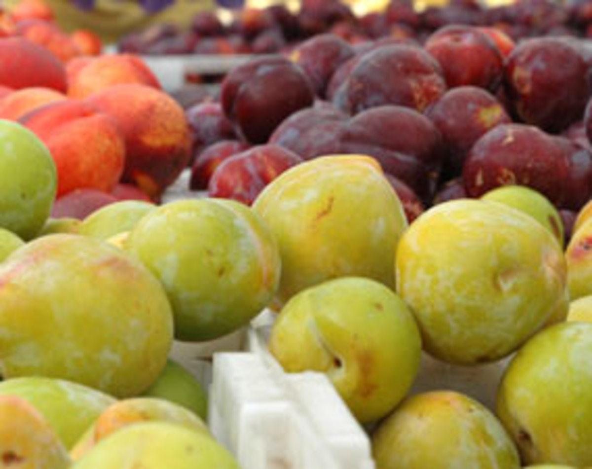 organic-produce1