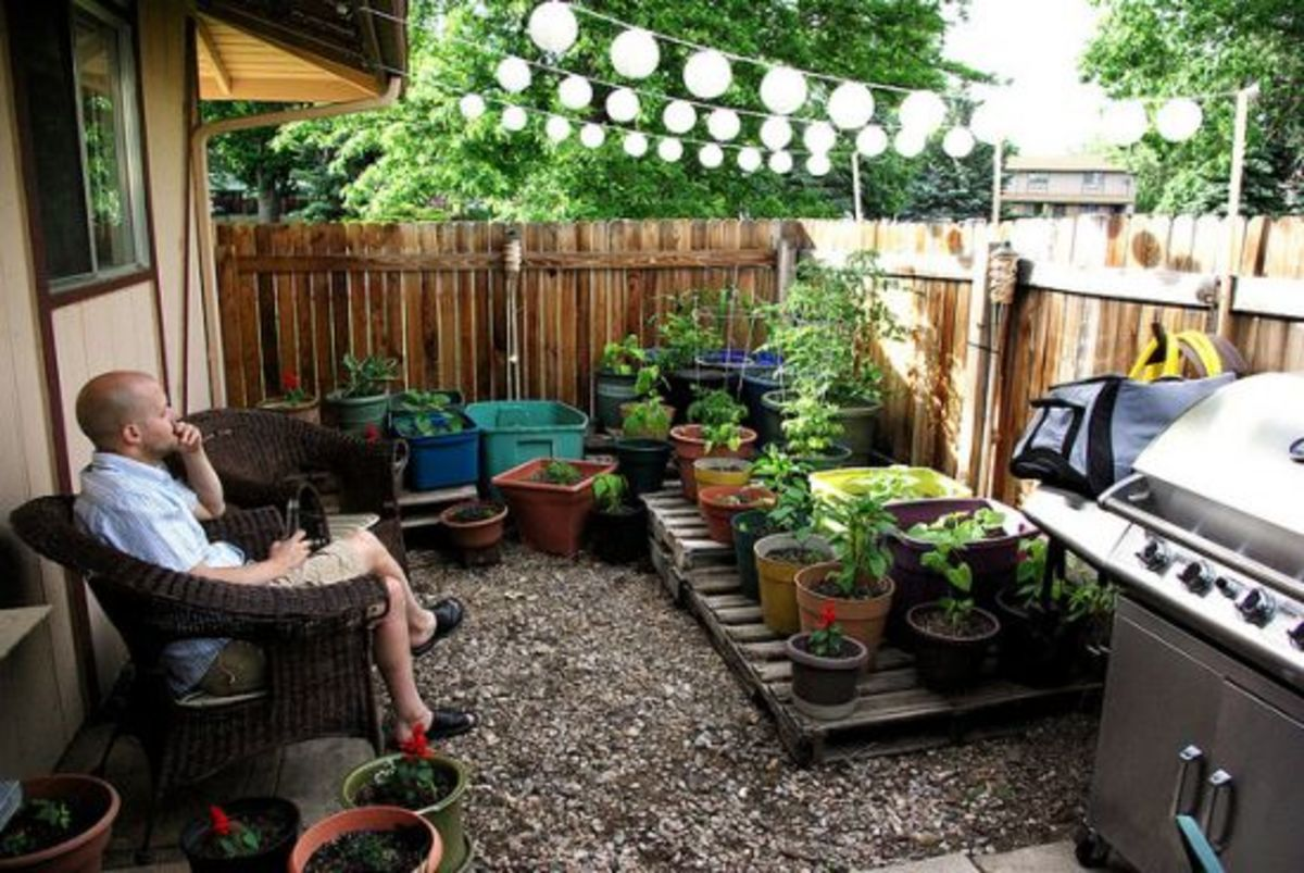 Tiny Plot Big Bounty 4 Small Space Gardening Inspirations