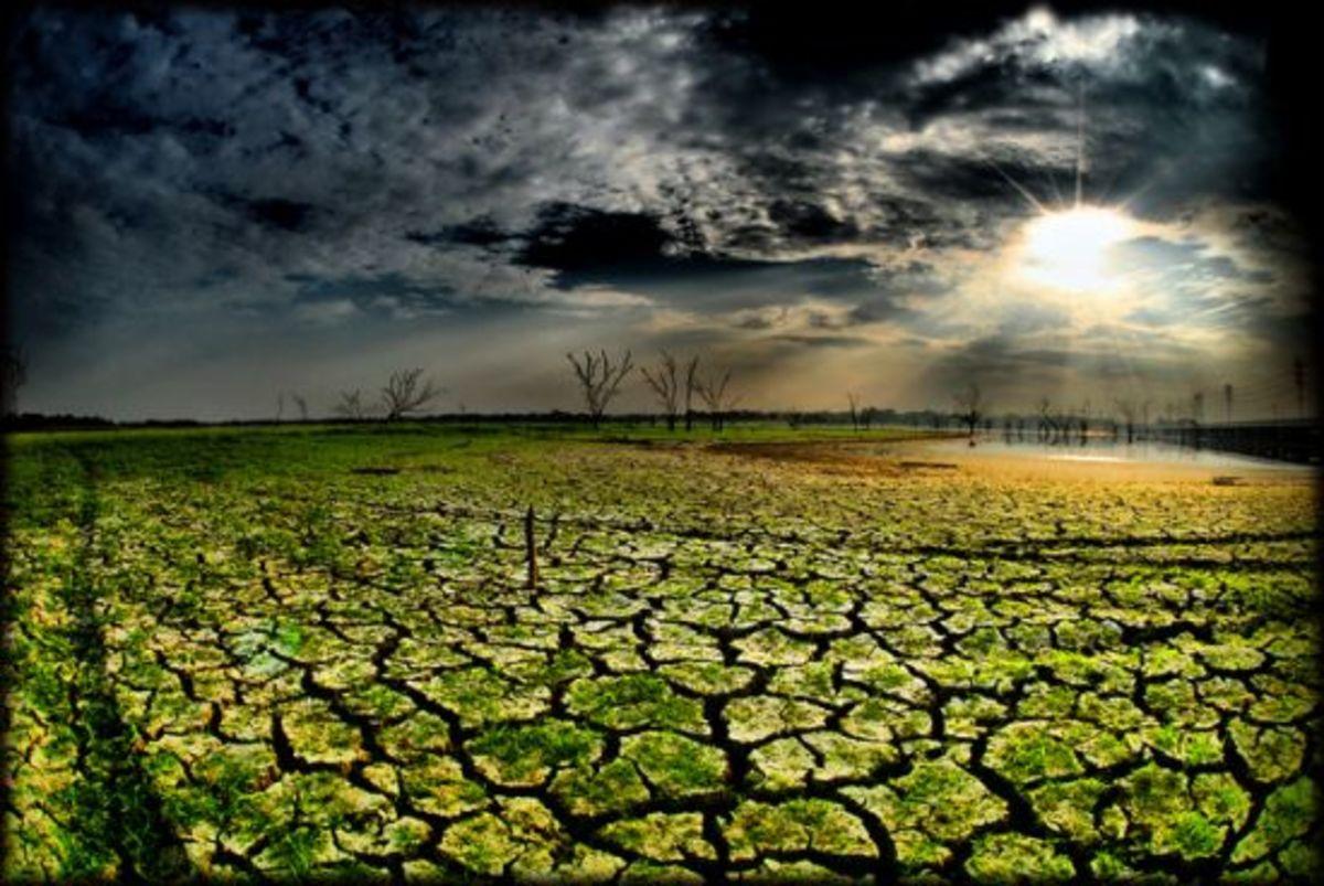 drought-ccflcr-crowt59