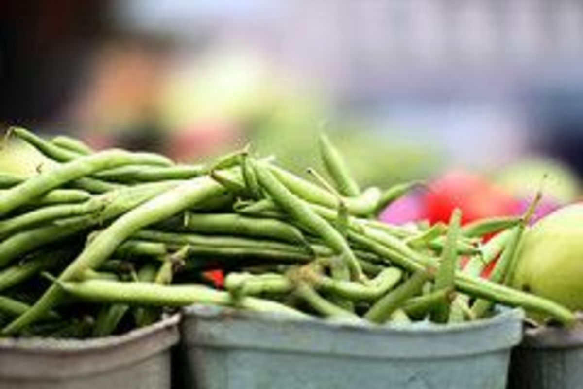 green-beans-ccflcr-mr-t-in-DC