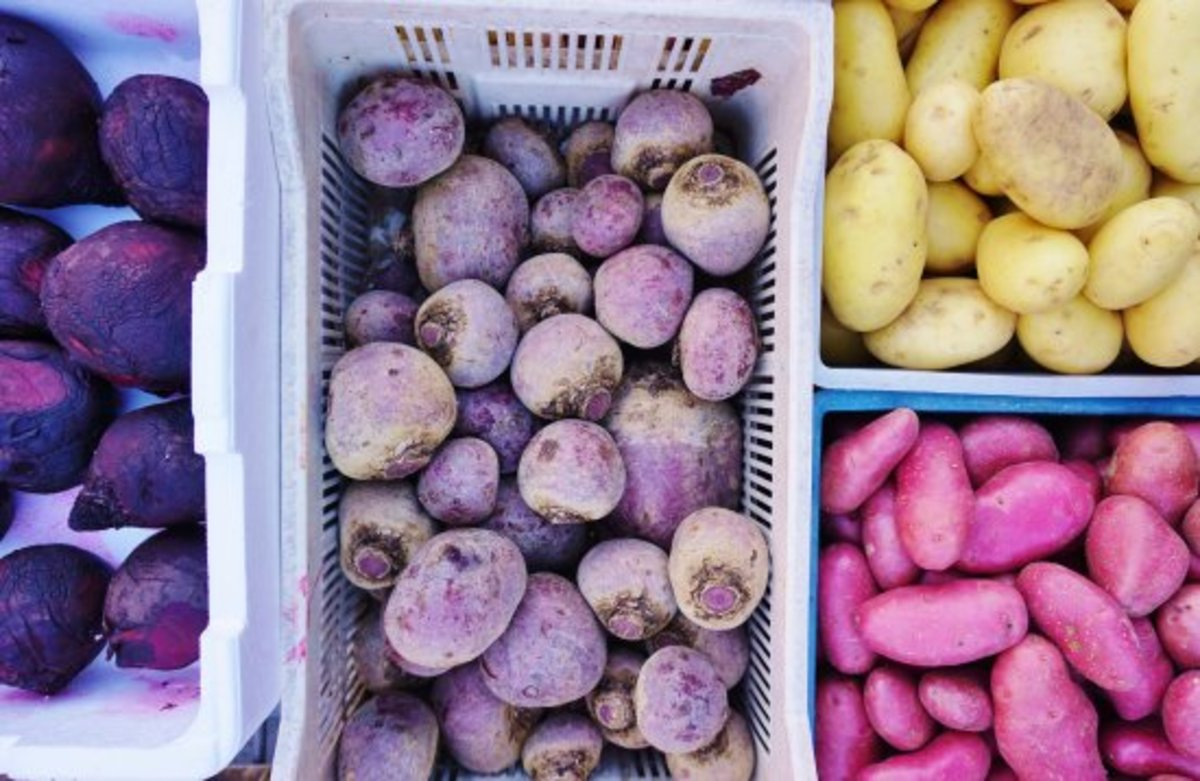 Don't Get Caught in the Cold: 5 Reasons You Want to Sign Up For a Winter CSA Share Now