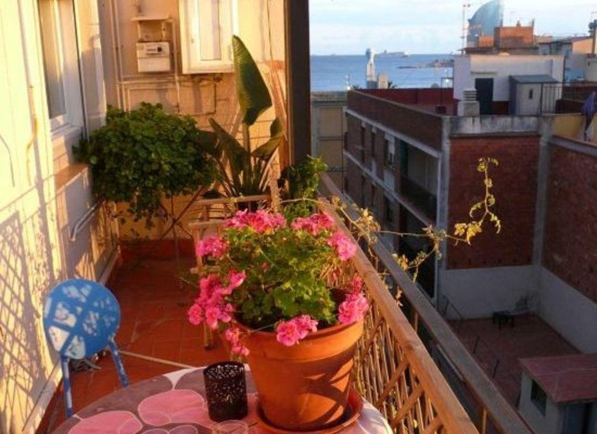 balconygardenreginawb2010