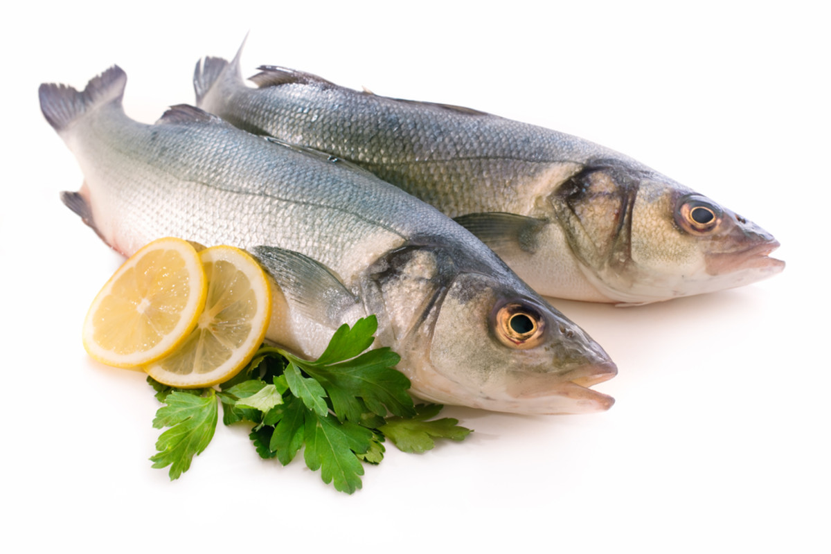 Is This the End of Seafood Fraud from International Fisheries? New Regulations Announced by NOAA