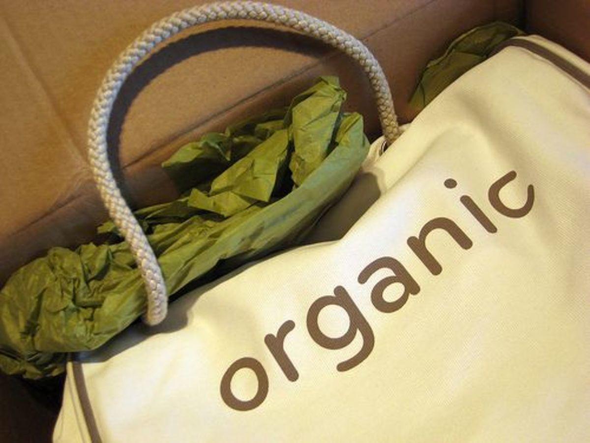 organic_shopping_ccfler_keira-anne