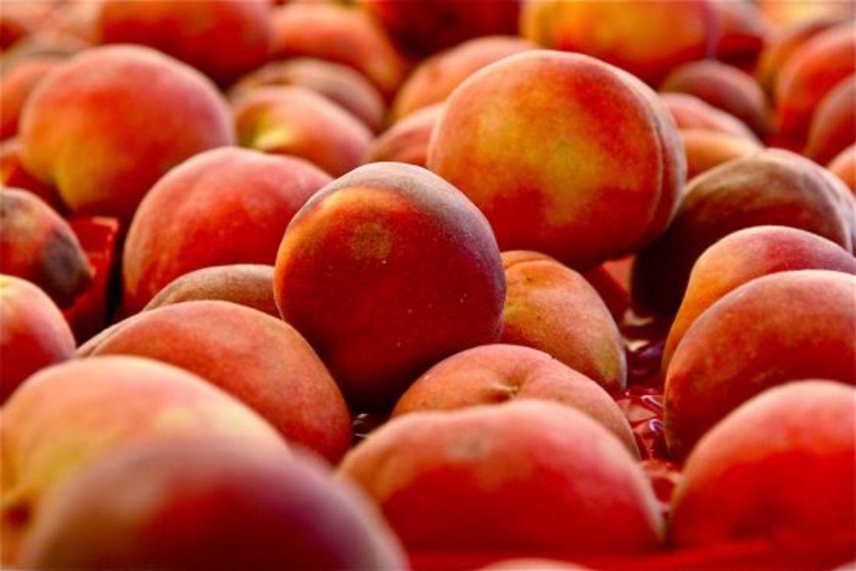 peaches-ccflcr-jillettinger
