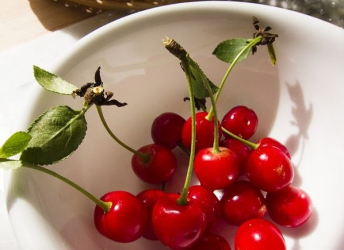 pucker up & enjoy the health benefits of tart cherries