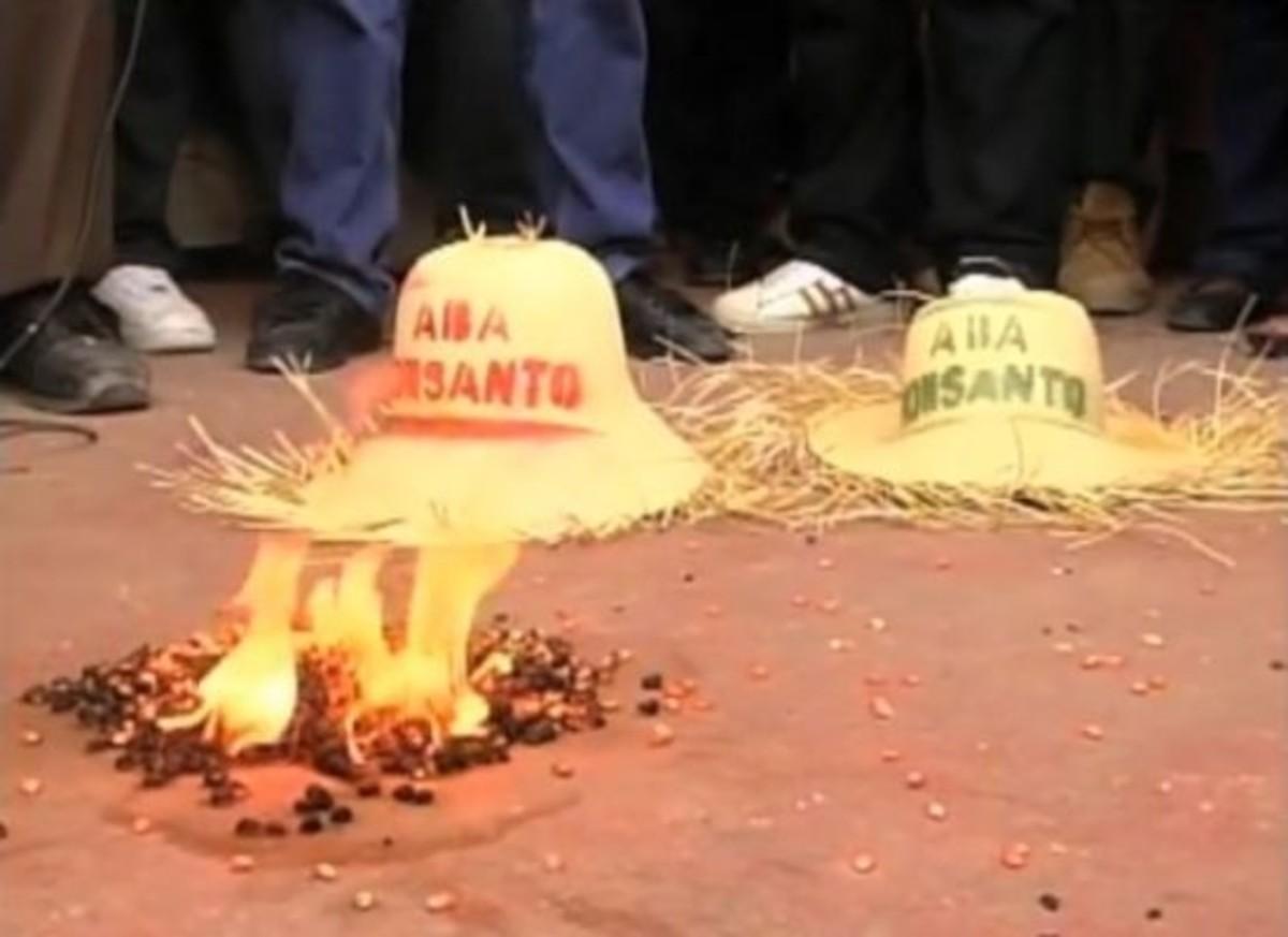 Seed burning