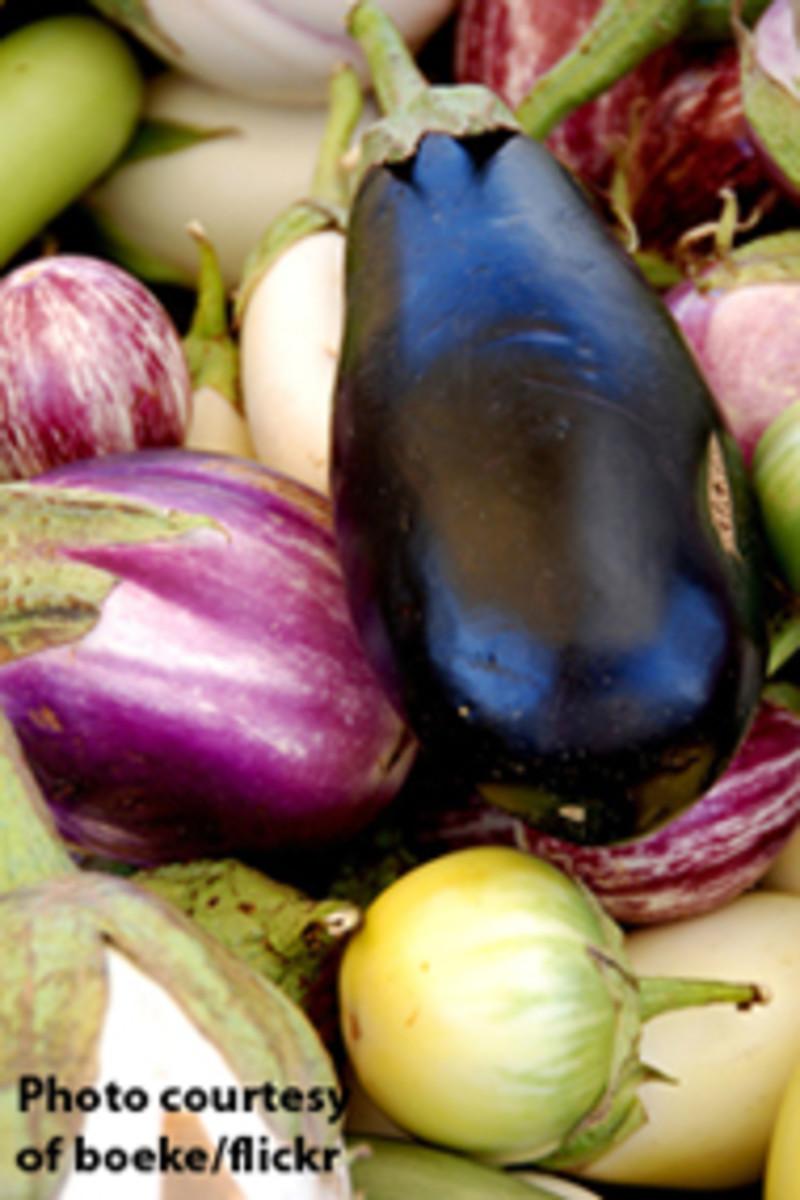 eggplant-boeke3