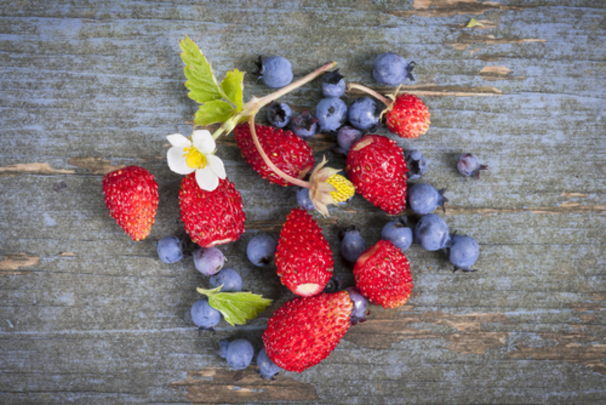 A picture of berries and wild greens