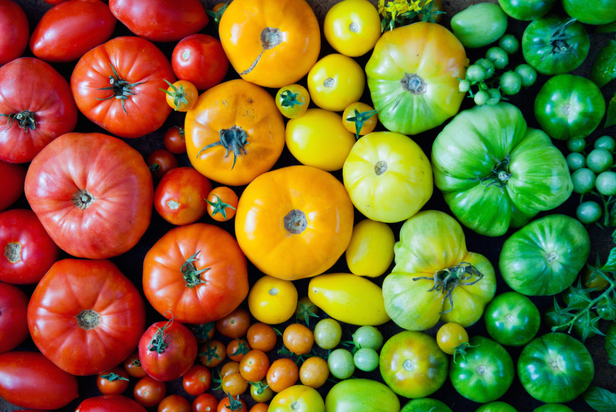 13 Ways To Eat All The Heirloom Tomatoes This Summer All