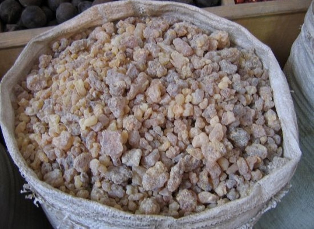 frankincense-ccflcr-mamamusings1