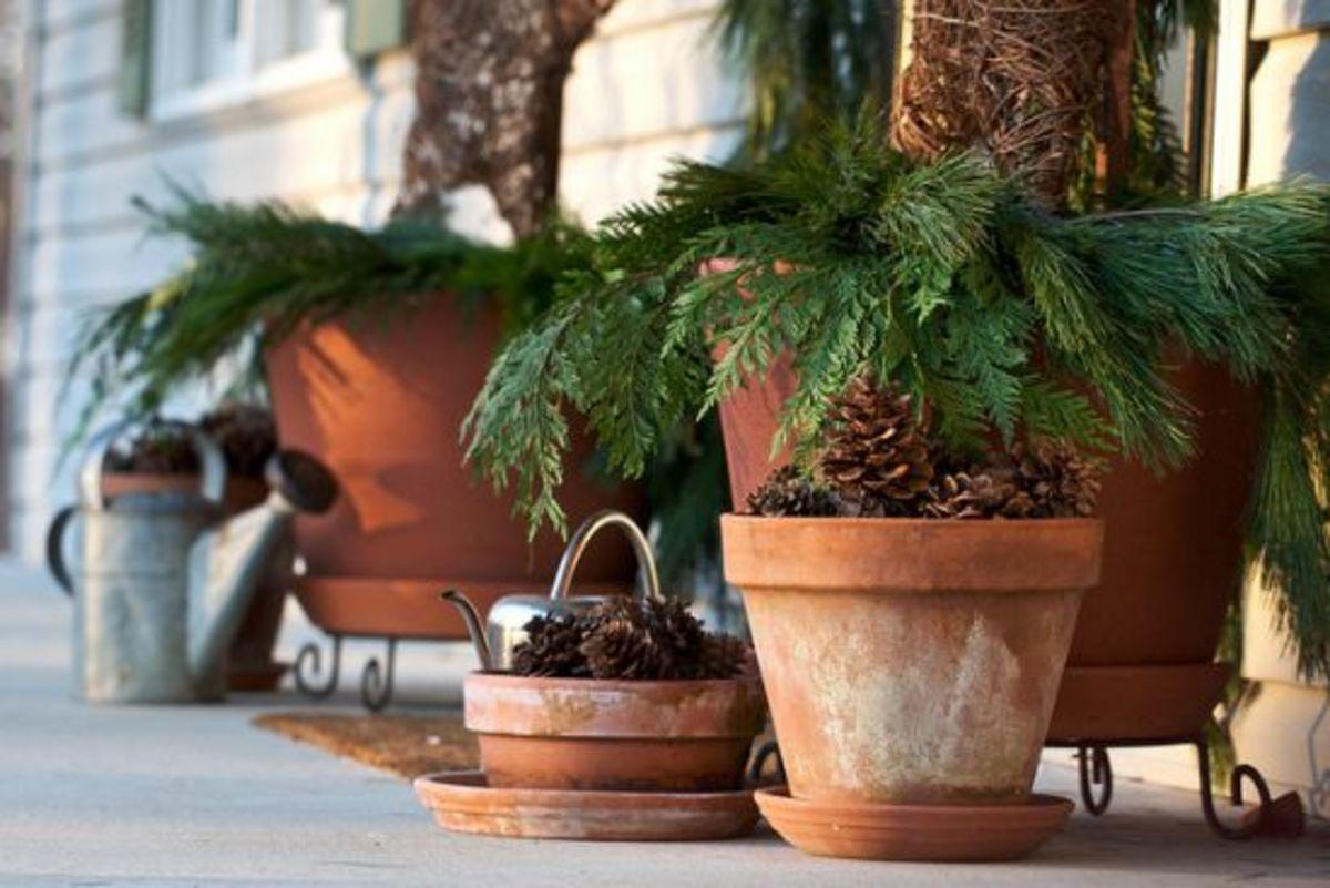 flowerpots-ccflcr-Chiots-Run