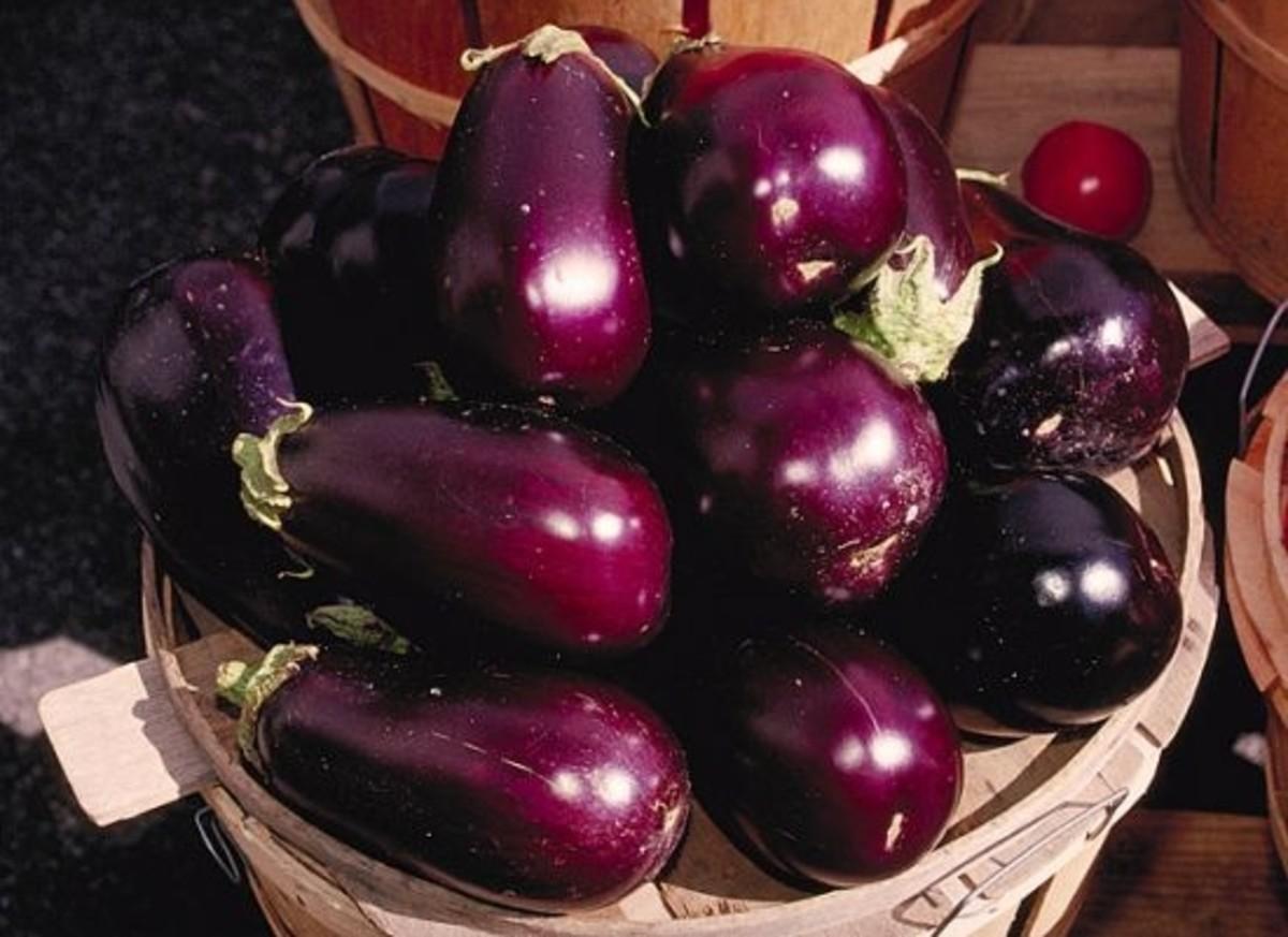 eggplant-ccflcr-jayluker