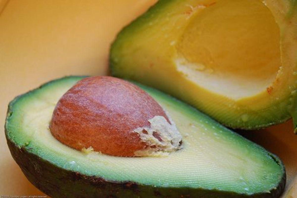 avocado-ccflcr-HarmonyRae