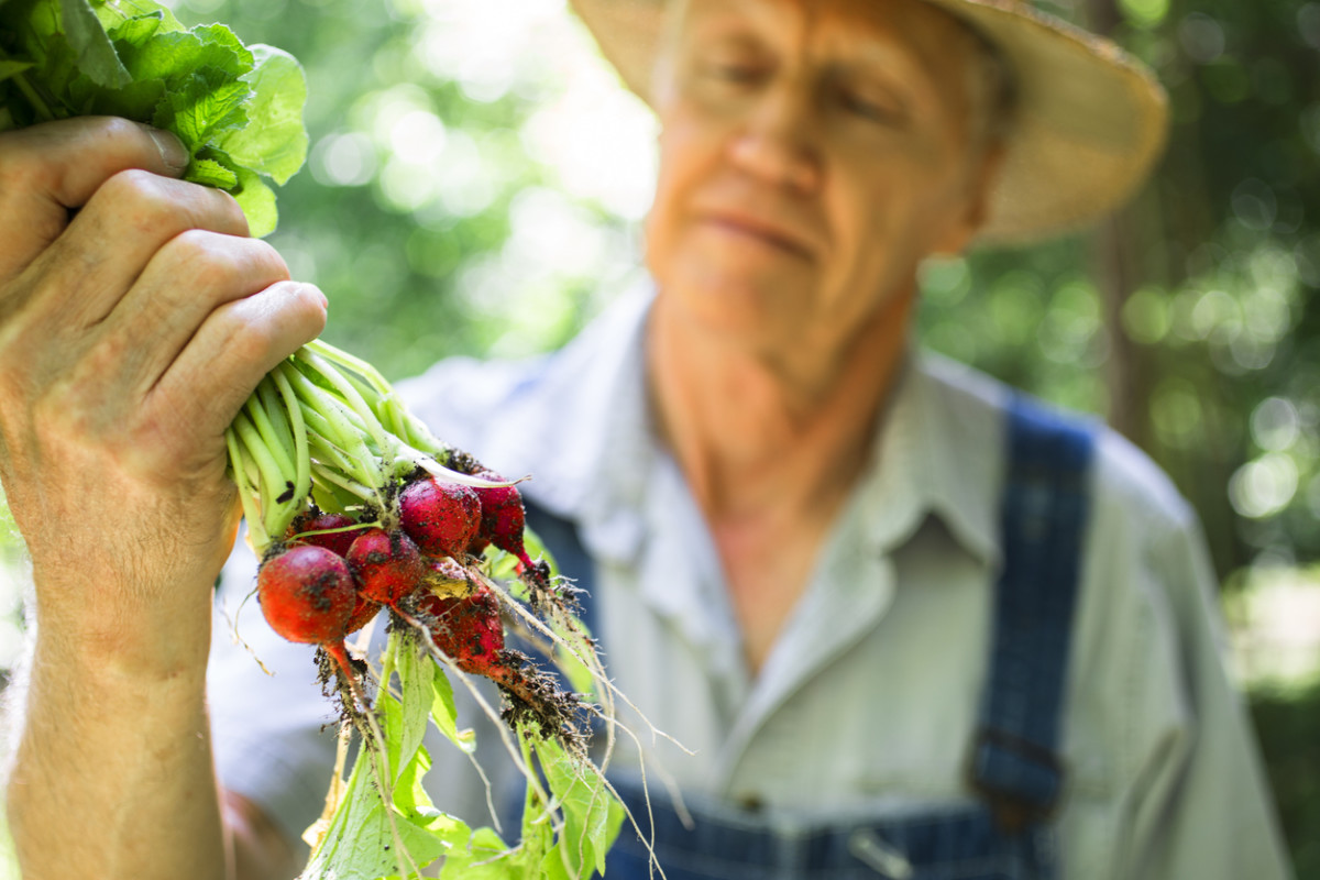 New Organic Label Will Hold Farmers to Higher Standards Than USDA Certification
