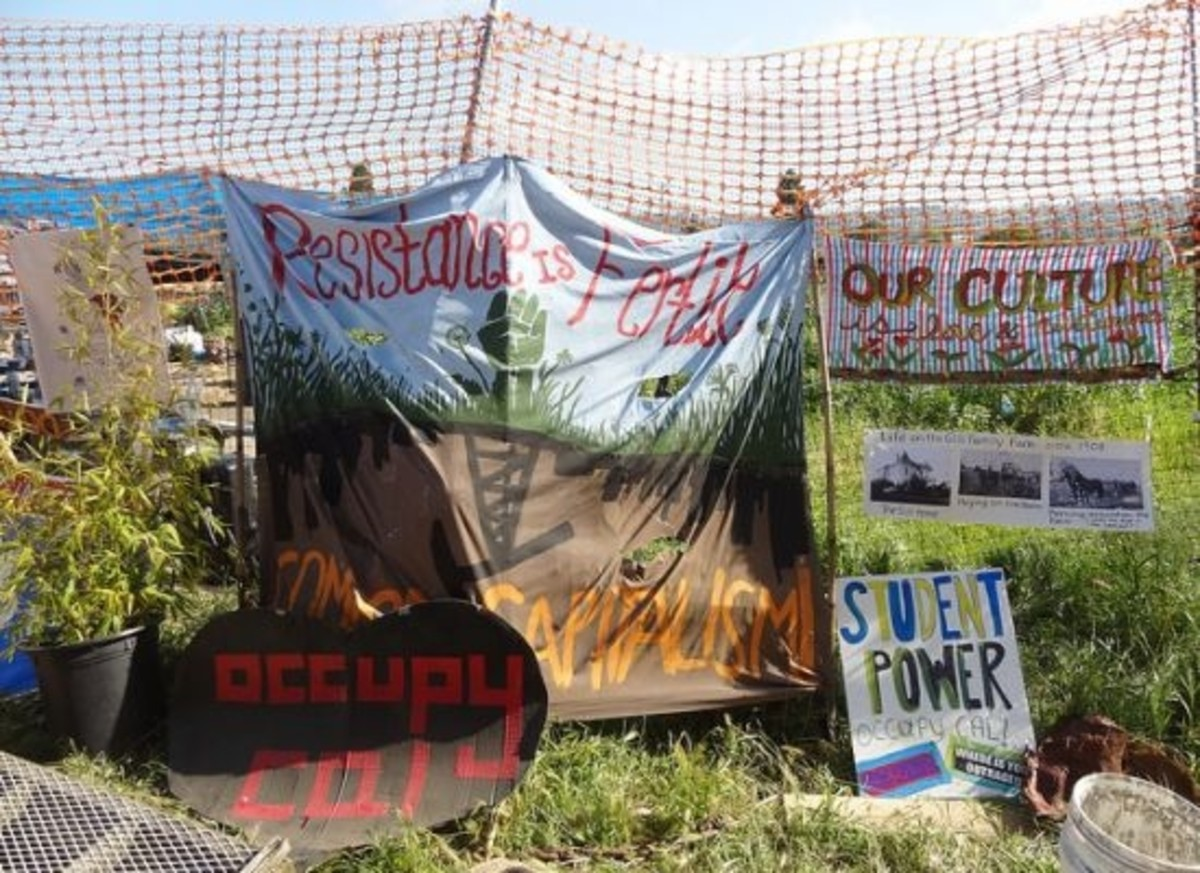 occupy-food-ccflcr-lilyrhoads