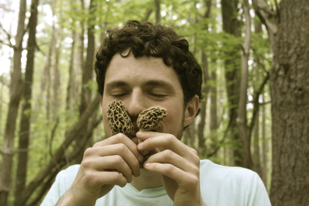The Mushroom Forager - Ari with Morels