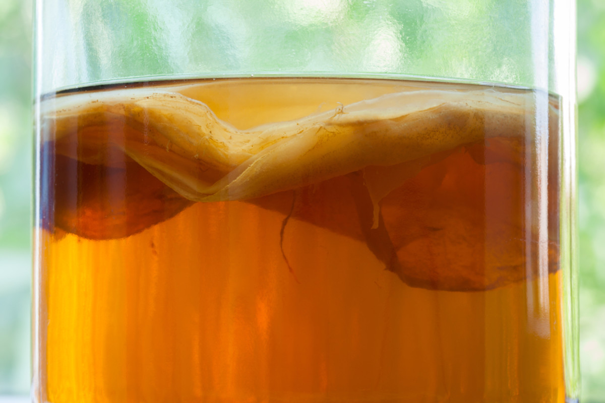 Learn about uses for kombucha tea.