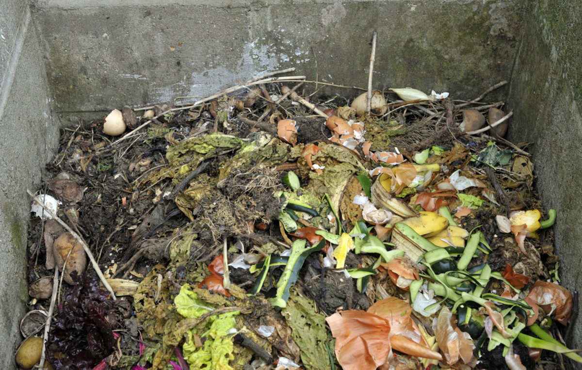 Industrial/Organic's plan could help curb NYC's food waste problem.