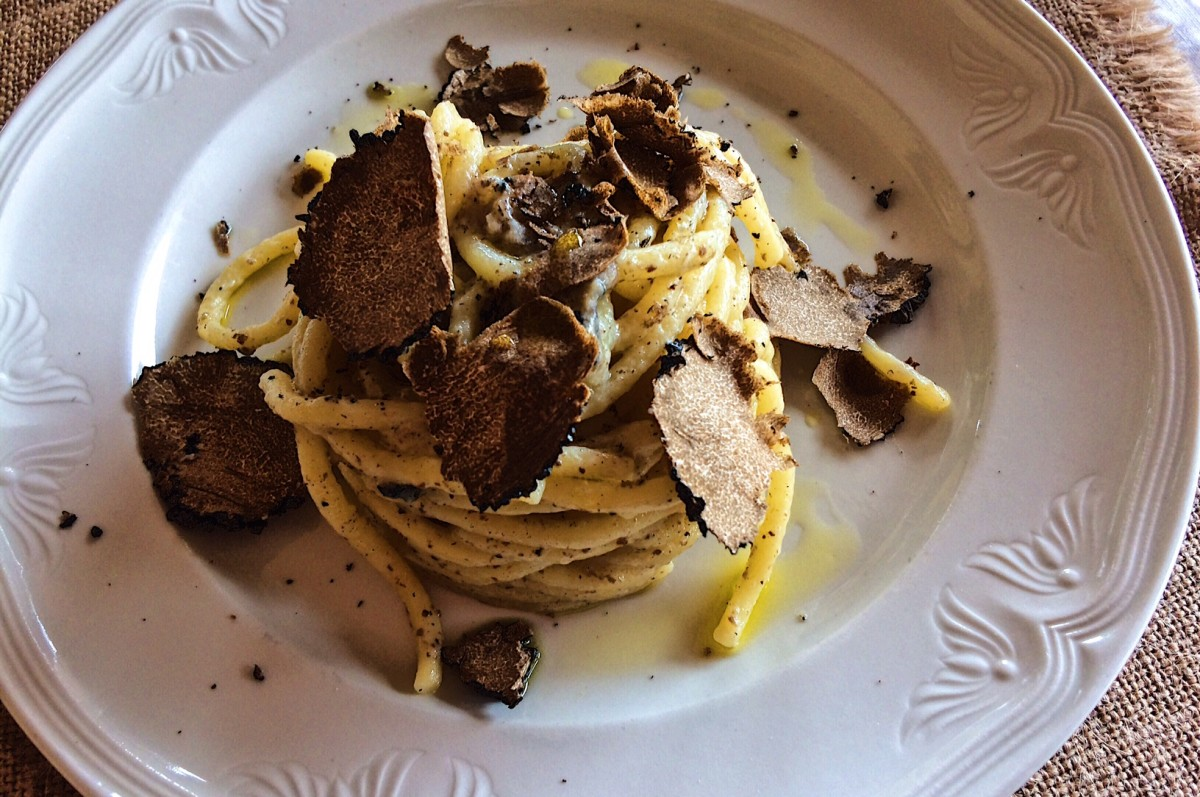 vBlack Truffle Hunting in Italy