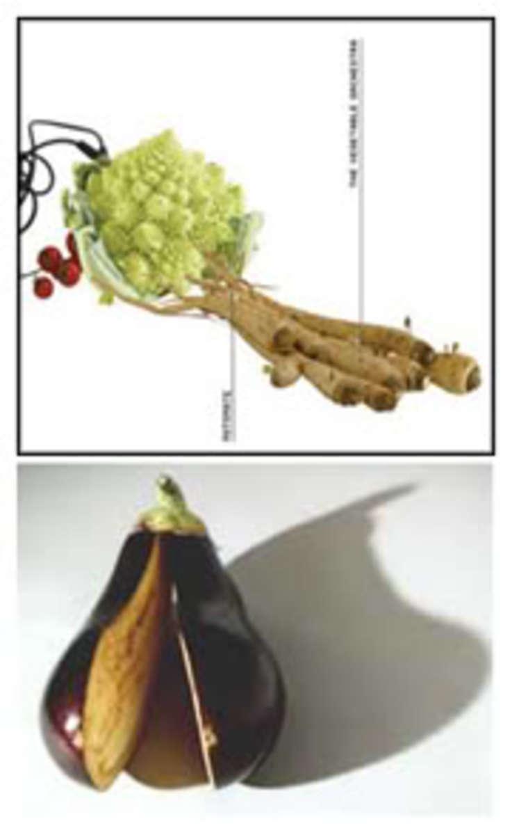 veggieorchestra1