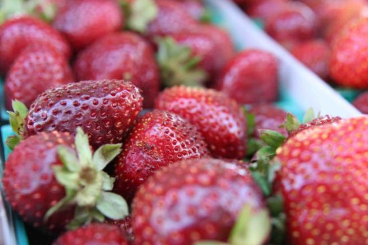 strawberry-jillslibrary-jillettinger