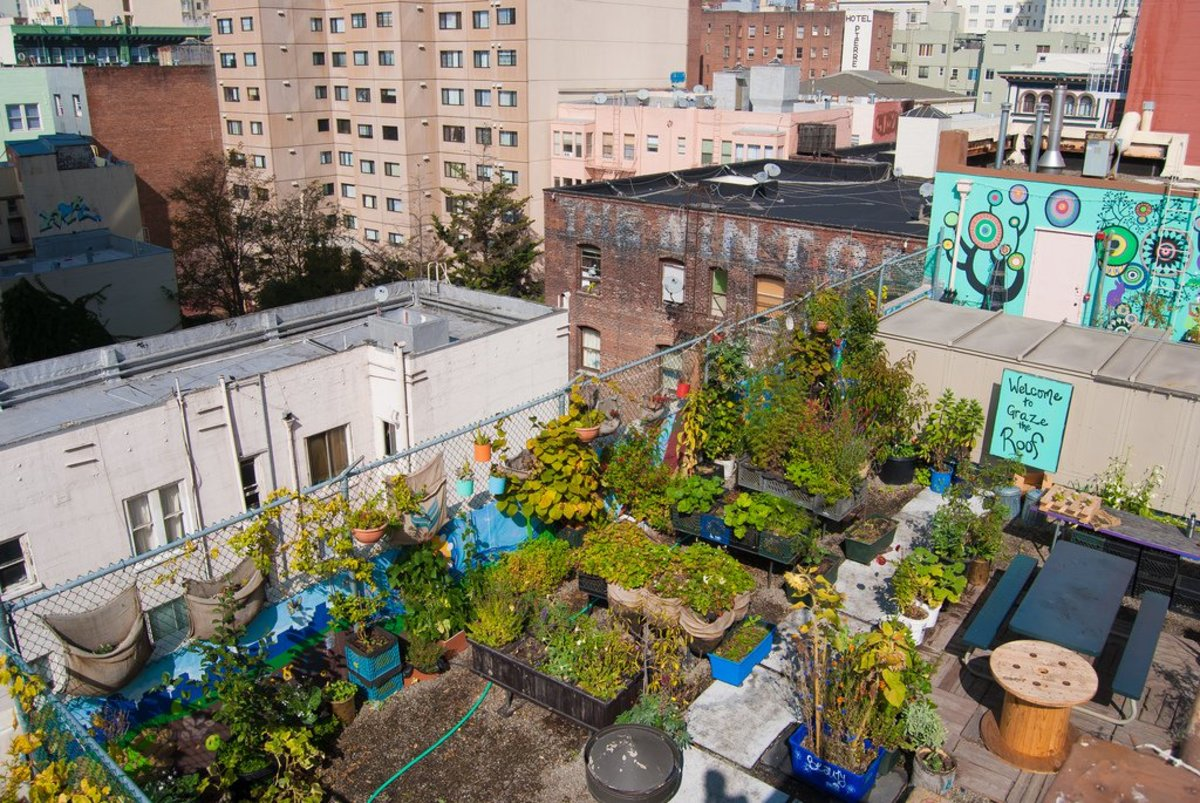 what is urban gardening the hot trend that 39 s taking over cities organic authority. Black Bedroom Furniture Sets. Home Design Ideas