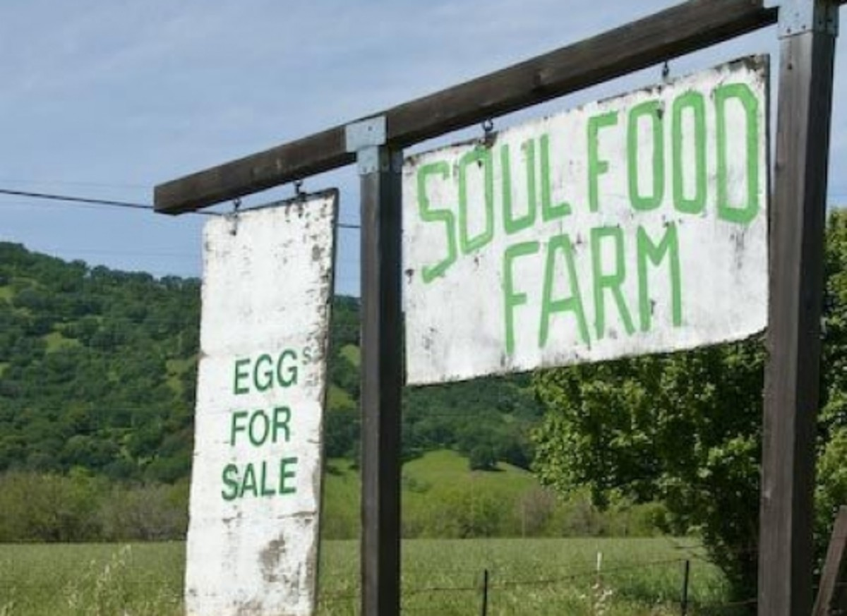 soulfarm-ccflcr-christymcdonald
