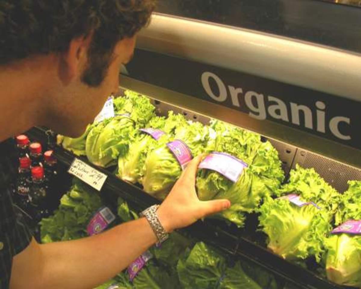 organic_production13