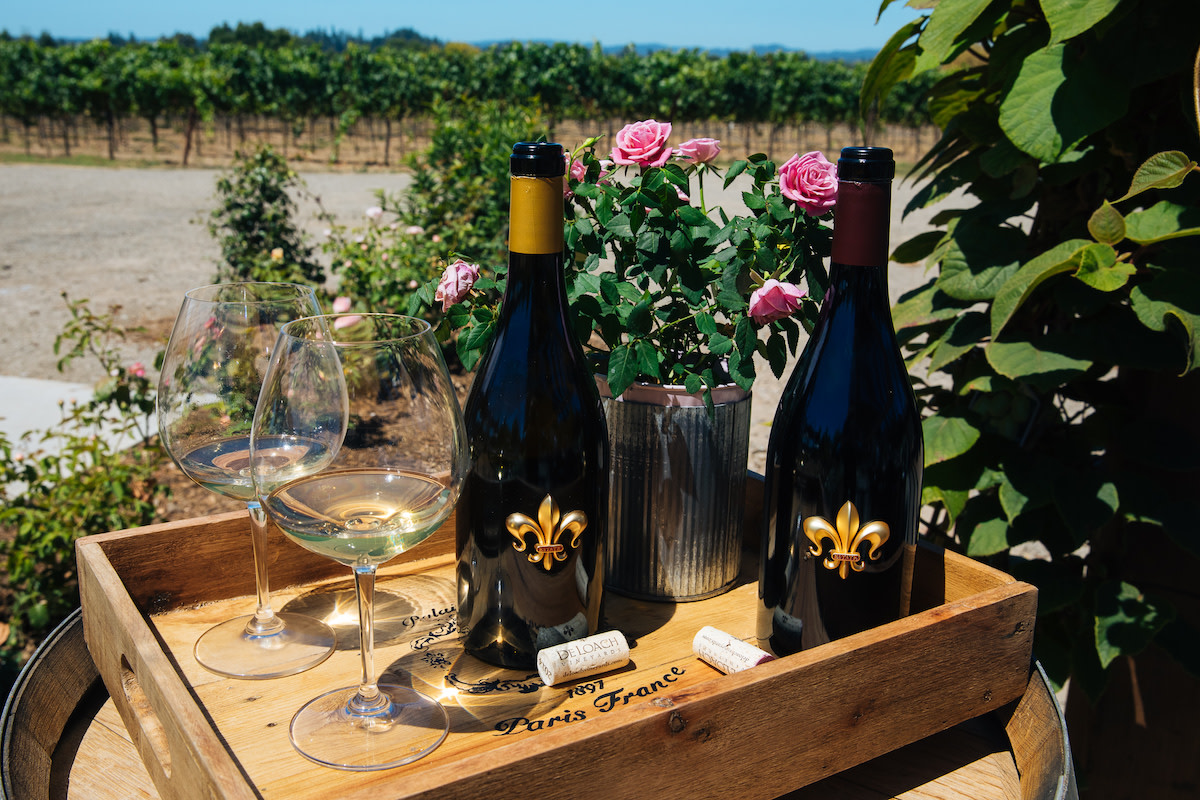 Best organic wines