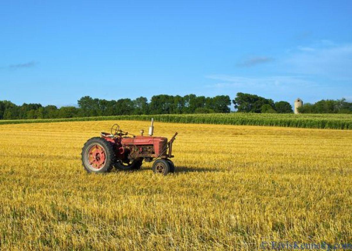 wheat-ccflcr-elviskennedy