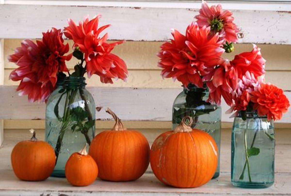 pumpkinflowers-ccflcr-hellojulie