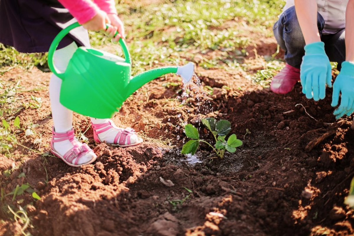 Kids love easy-to-grow plants.