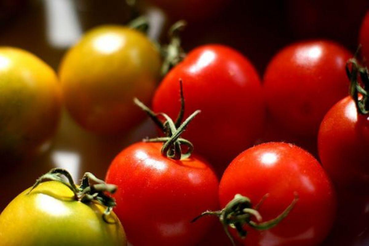tomatoes-ccflcr-izik