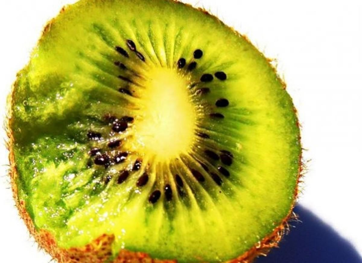 kiwi-ccflcr-darwinbell