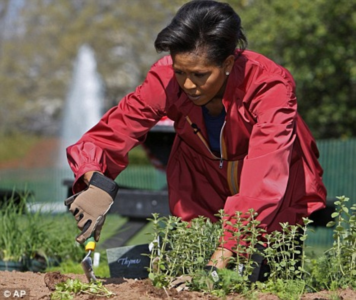 michelle_obama_garden