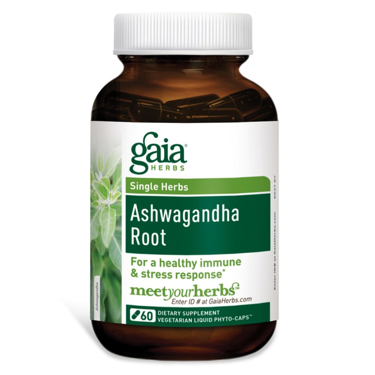5 Proven Stress-Busting Benefits of Ashwagandha (Plus Our Go