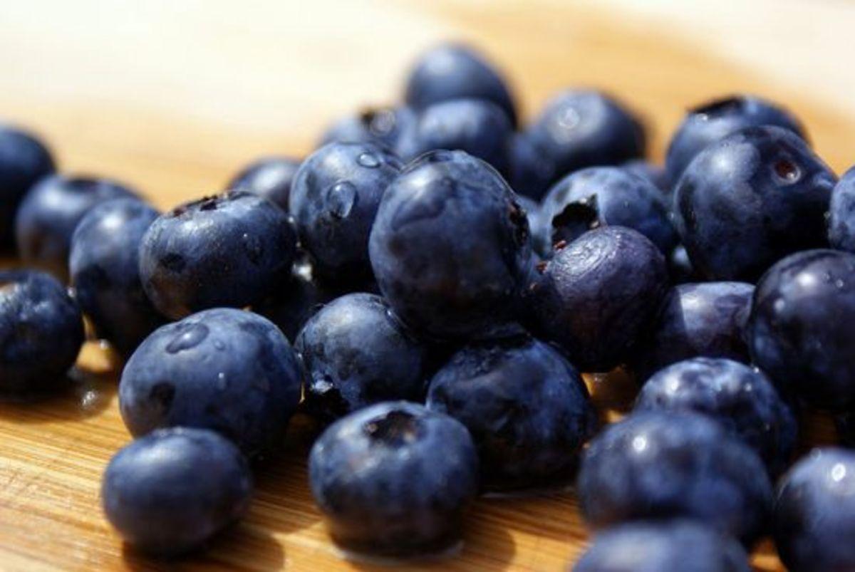 blueberries-ccflcr-kylemacdonald