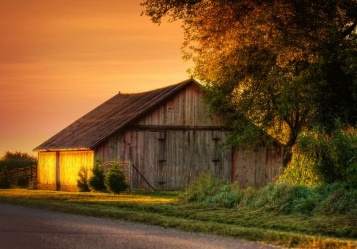 farm-ccflcr-Earl-Wilkerson