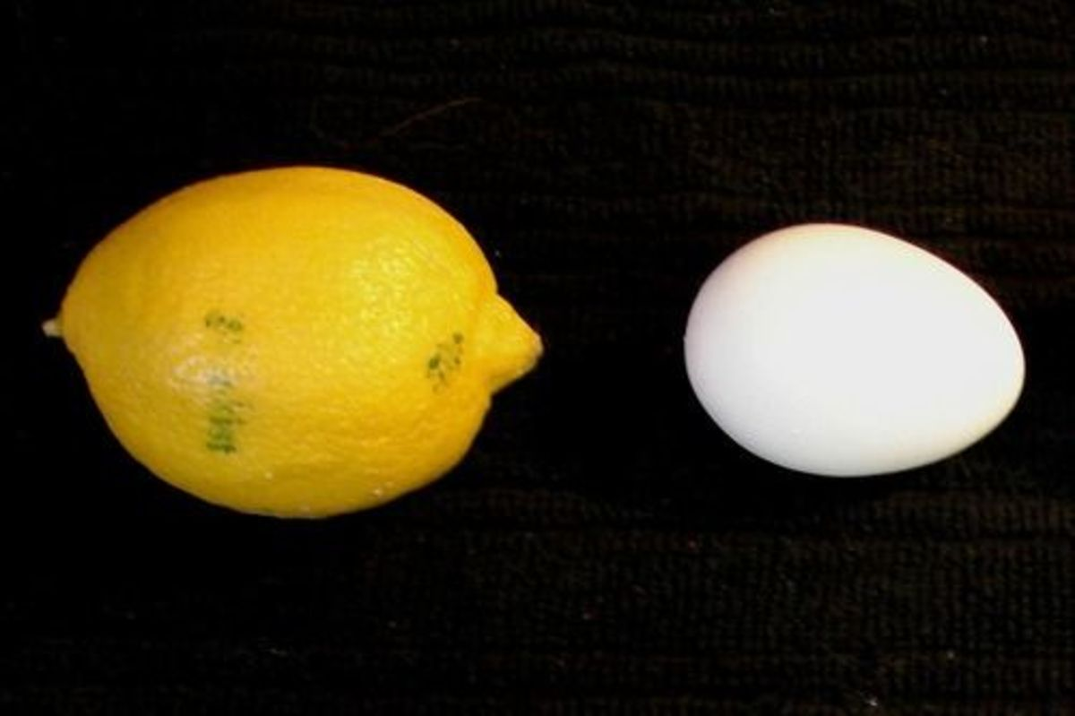 lemon_egg_jouste