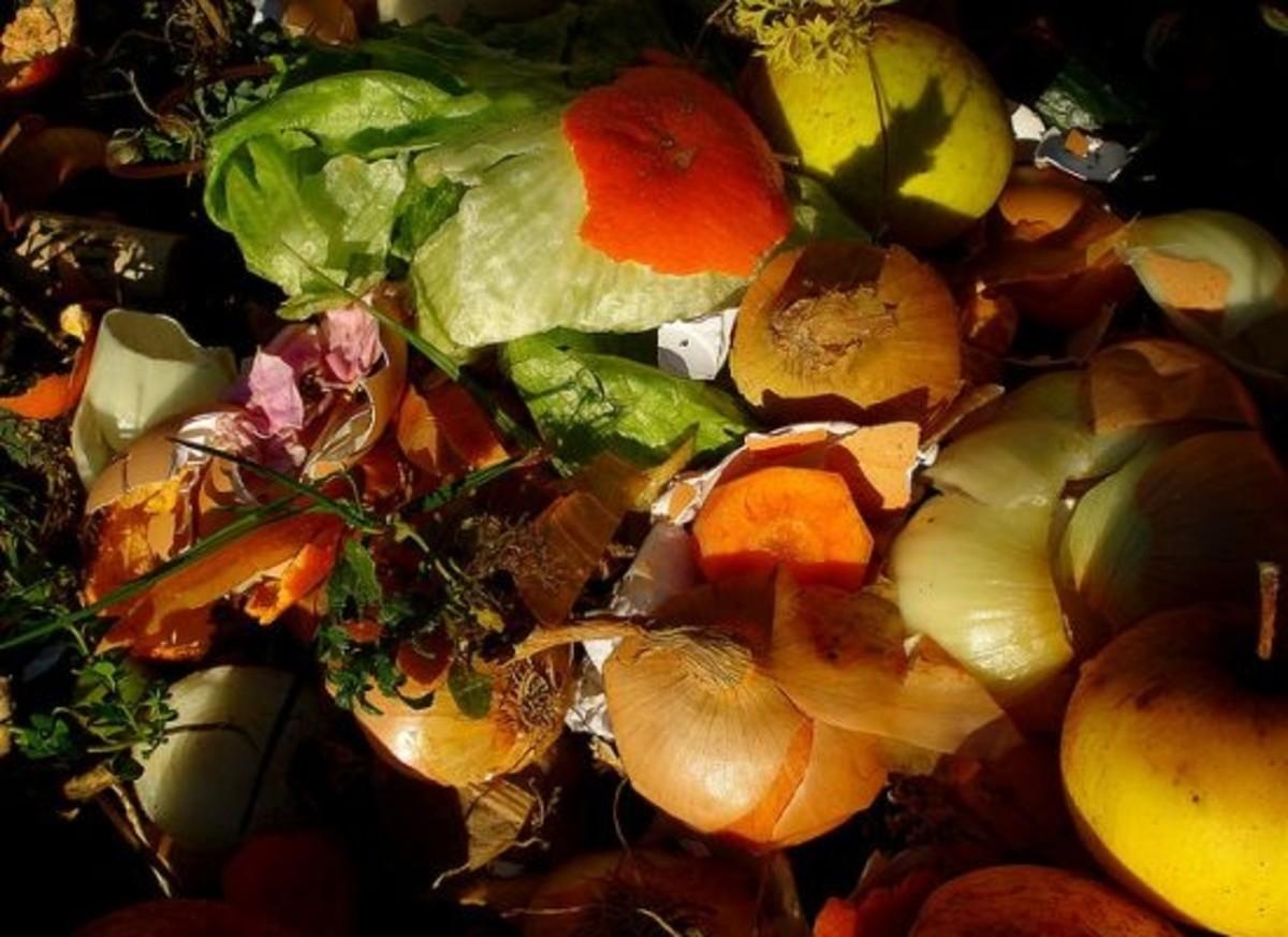 veggiescraps-ccflcr-netefekt