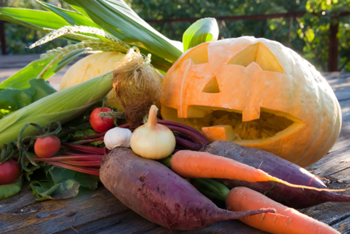 photo of fall vegetables