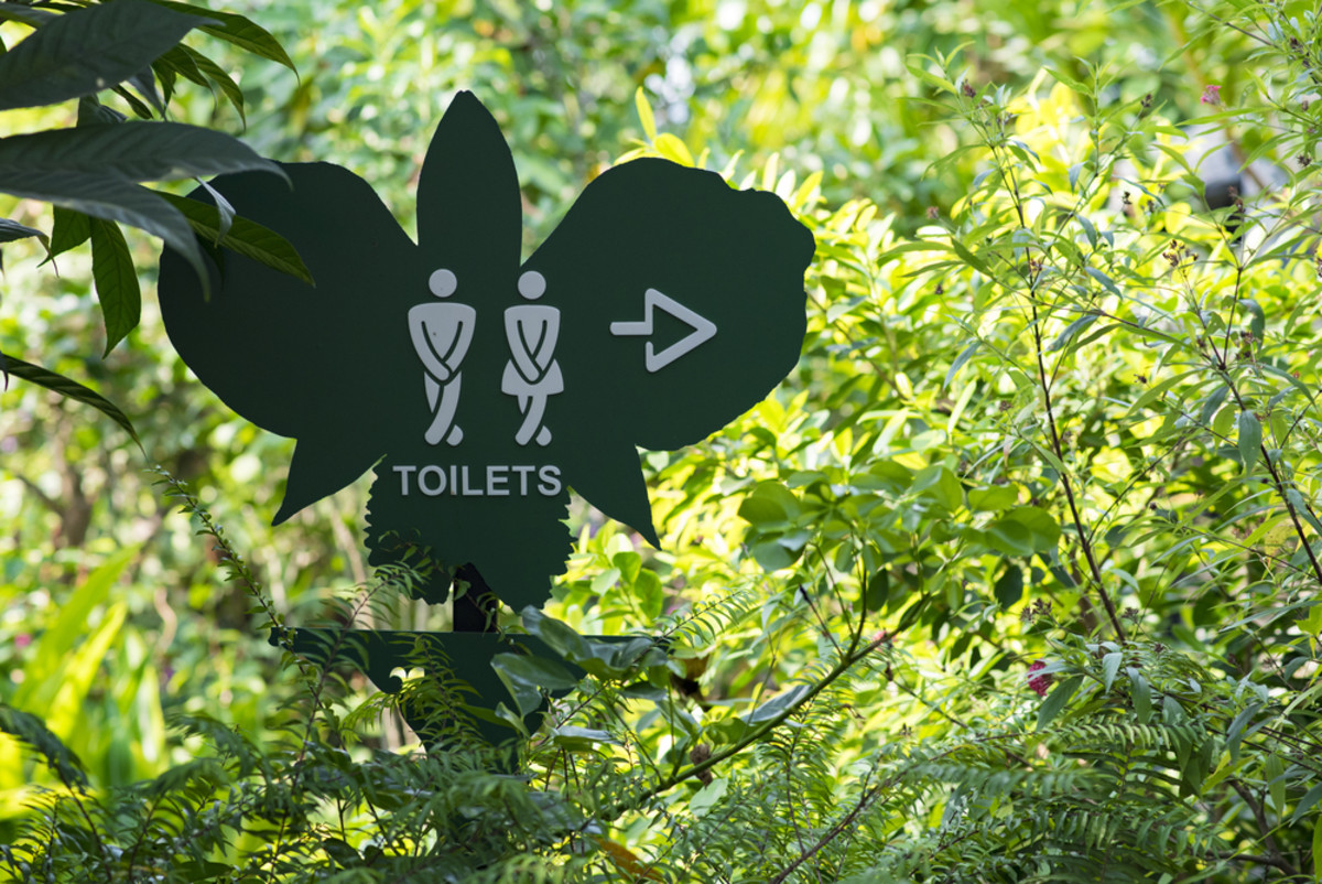 Female Pee Funnel