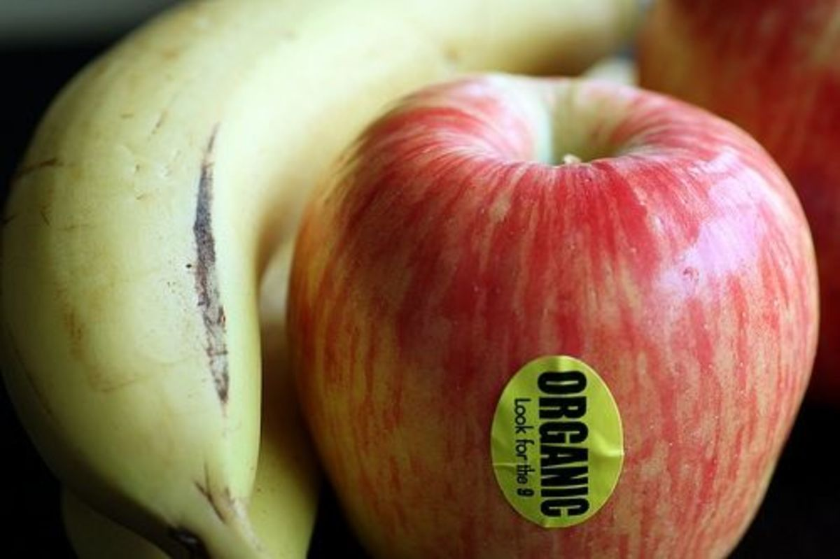 Ever Get a Mouthful About Eating Organic Food? - Organic
