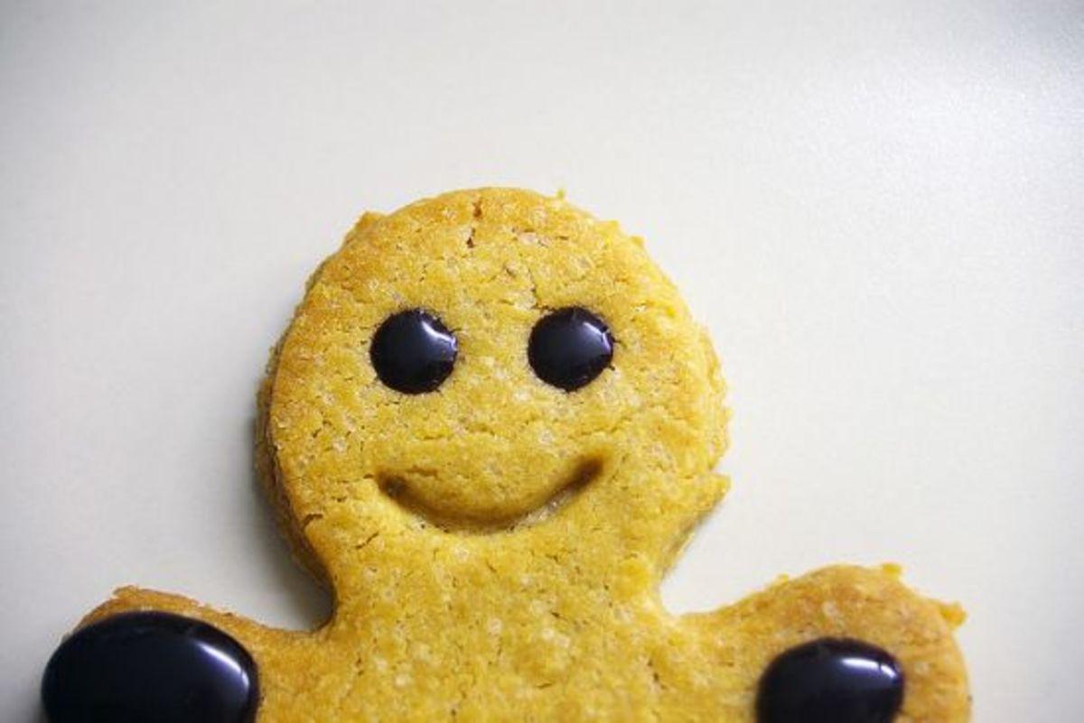 gingerbreadman-ccflcr-visualpanic