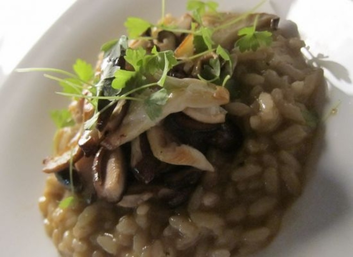 risotto-ccflcr-wonderyort